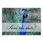 Tema 1 del boda del pavo real anuncios