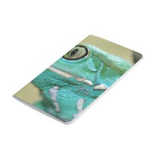 Tema anfibio cuadernos grapados