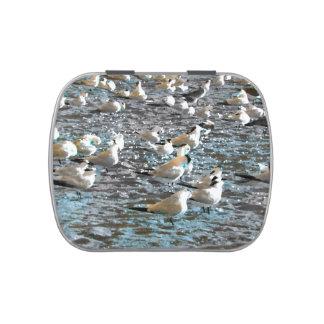 tema azul pintado pájaros la Florida de la playa Frascos De Caramelos