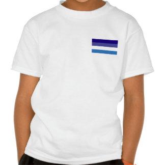 Tema brasileño de la bandera de G0YS Camisetas