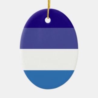 Tema brasileño de la bandera de G0YS Adorno Ovalado De Cerámica