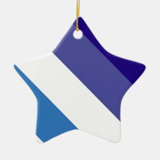 Tema brasileño de la bandera de G0YS Adorno De Cerámica En Forma De Estrella