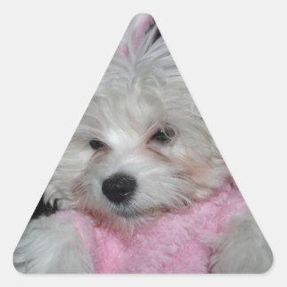 Tema de encargo de la foto del mascota pegatina triangular