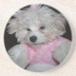 Tema de encargo de la foto del mascota posavasos personalizados