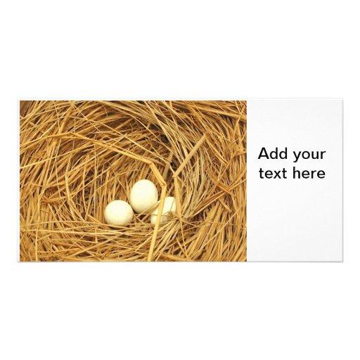 Tema de Pascua con tres huevos Tarjetas Fotográficas