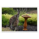 Tema del canguro felicitación