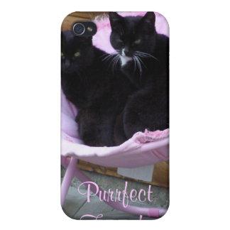 Tema del gato de los amigos de Purrfect iPhone 4/4S Funda