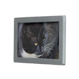 Tema del gato hebillas cinturon rectangulares