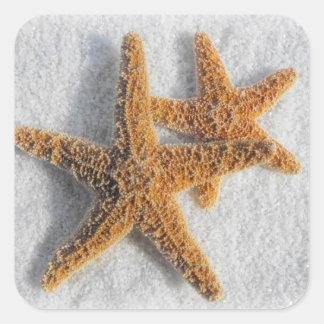 Tema del océano de la playa de la arena de las calcomanía cuadradas personalizadas