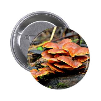 Tema del otoño pin redondo 5 cm