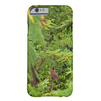 Tema del pájaro funda para iPhone 6 barely there