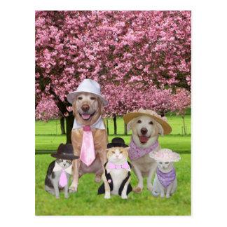 Tema divertido adaptable del rosa del mascota tarjetas postales