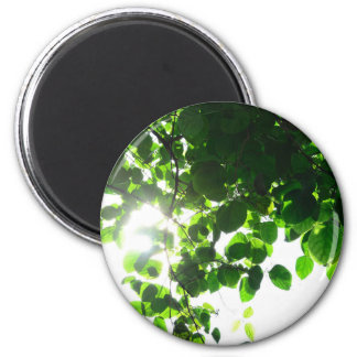 Temático verde superventas imán redondo 5 cm