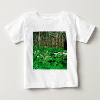 Temblor Aspen de la pastinaca de vaca del bosque Camisas