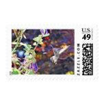 Temescal Hummingbird Stamps
