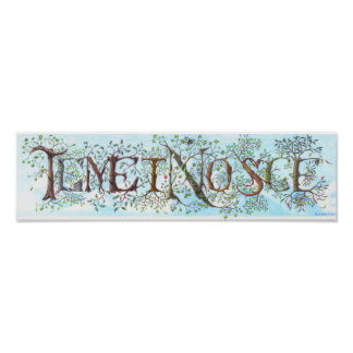 Temet Nosce Poster