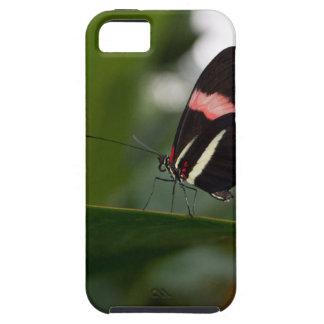 temp non apparel iPhone 5 case