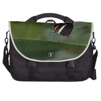 temp non apparel laptop bag