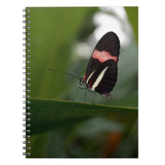 temp non apparel spiral notebooks