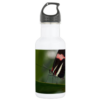 temp non apparel stainless steel water bottle