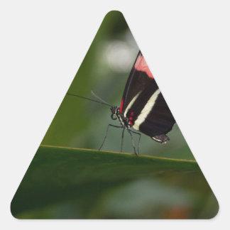 temp non apparel triangle stickers