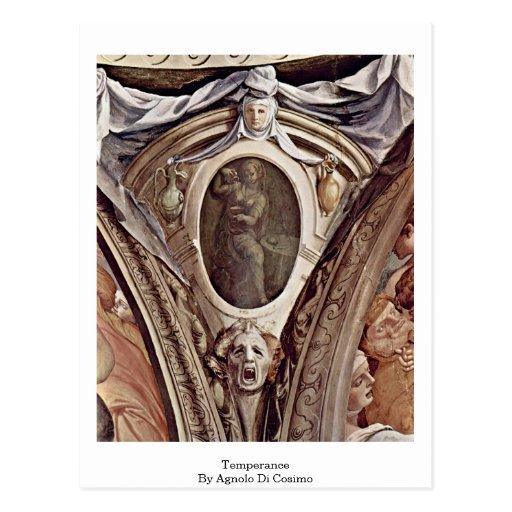 Temperance By Agnolo Di Cosimo Postcard