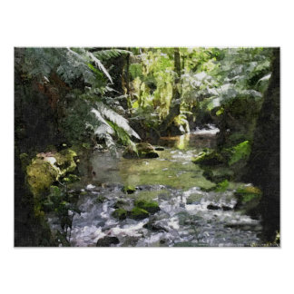Temperate Rainforest Marysville - Victoria Poster