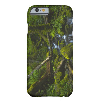 Temperate Rainforest Stream in Columbia River Barely There iPhone 6 Case