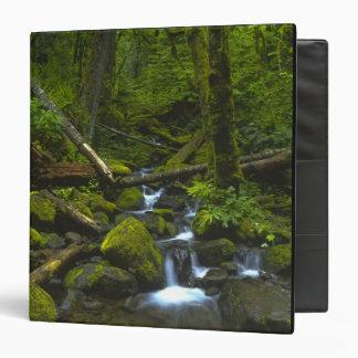 Temperate Rainforest Stream in Columbia River Binders