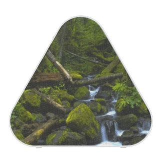 Temperate Rainforest Stream in Columbia River Bluetooth Speaker