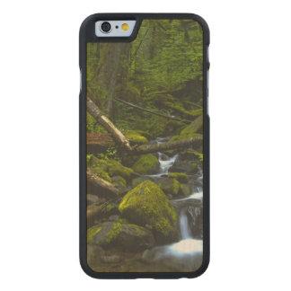 Temperate Rainforest Stream in Columbia River Carved Maple iPhone 6 Slim Case