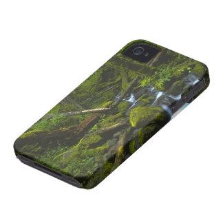 Temperate Rainforest Stream in Columbia River Case-Mate iPhone 4 Case