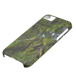 Temperate Rainforest Stream in Columbia River Cover For iPhone 5C