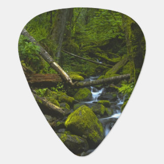 Temperate Rainforest Stream in Columbia River Guitar Pick