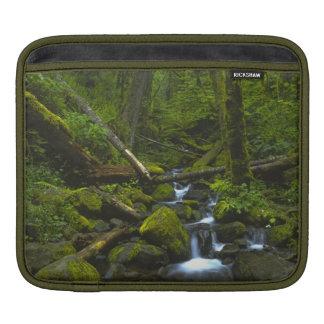 Temperate Rainforest Stream in Columbia River iPad Sleeve
