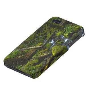 Temperate Rainforest Stream in Columbia River iPhone 4/4S Cases