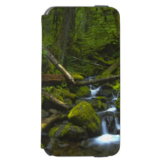 Temperate Rainforest Stream in Columbia River iPhone 6/6s Wallet Case