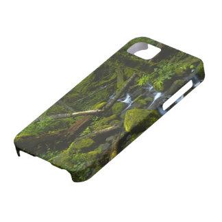 Temperate Rainforest Stream in Columbia River iPhone SE/5/5s Case