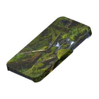 Temperate Rainforest Stream in Columbia River iPhone SE/5/5s Cover