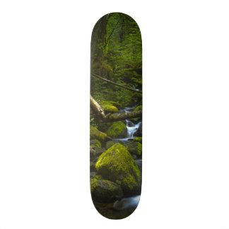 Temperate Rainforest Stream in Columbia River Skateboard