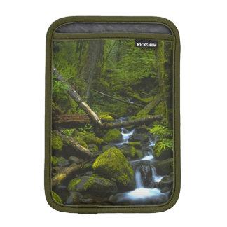 Temperate Rainforest Stream in Columbia River Sleeve For iPad Mini