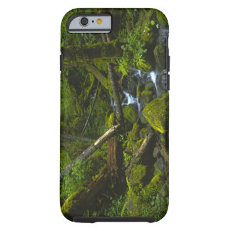 Temperate Rainforest Stream in Columbia River Tough iPhone 6 Case