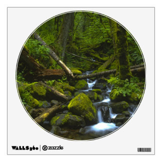 Temperate Rainforest Stream in Columbia River Wall Graphics