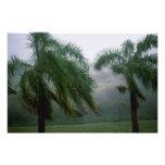 Tempestad del St. Croix Impresiones Fotograficas