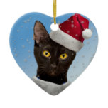 Template - Add Hats to your Cat Dog Photos Ceramic Ornament