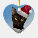 Template - Add Hats to your Cat Dog Photos Ornament