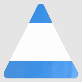 Template DIY add  TEXT IMG Oil Painted Blue Wall Triangle Sticker