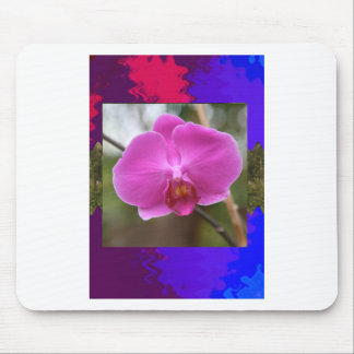 Template orchid flowers butterfly pink yellow gift mousepads