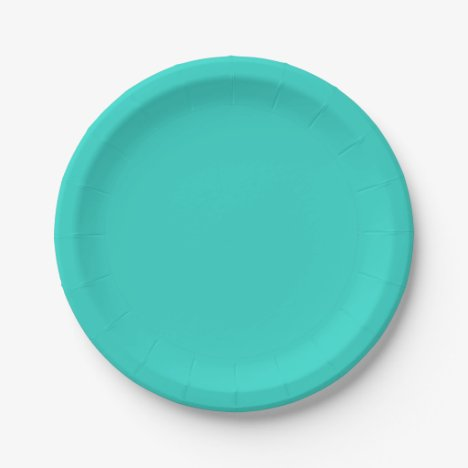 Template Turquoise Paper Plate