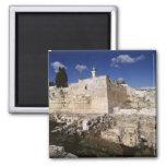 Temple Mount Fridge Magnet